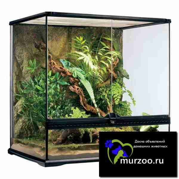 Hagen EXO terra terrarium medium tall - террариум