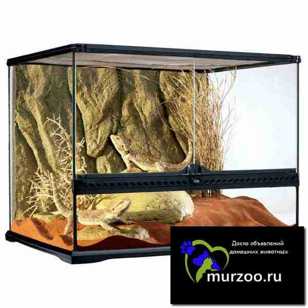 Hagen EXO terra terrarium medium wide - террариум