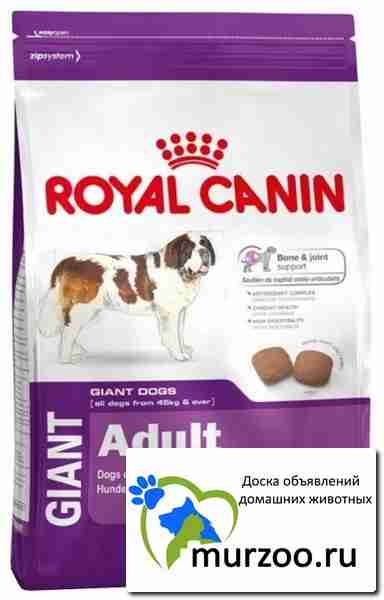 Корм royal canin maxi junior agr 32